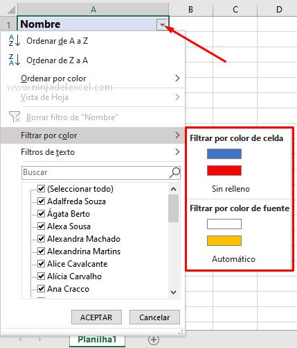Como Filtrar por Color en Excel