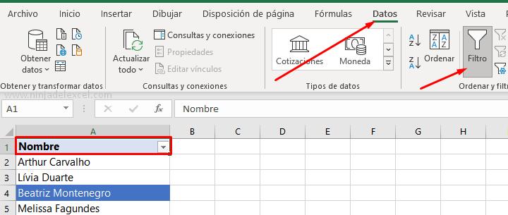 Filtrar por Color en Excel