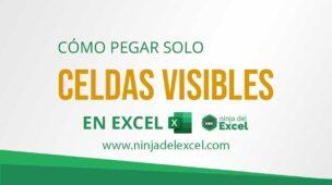 Cómo-Pegar-Solo-Celdas-Visibles-en-Excel