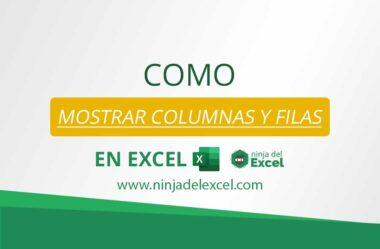 Como Mostrar Columnas y Filas en Excel (Mostrar)