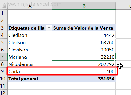 Ninja del Excel